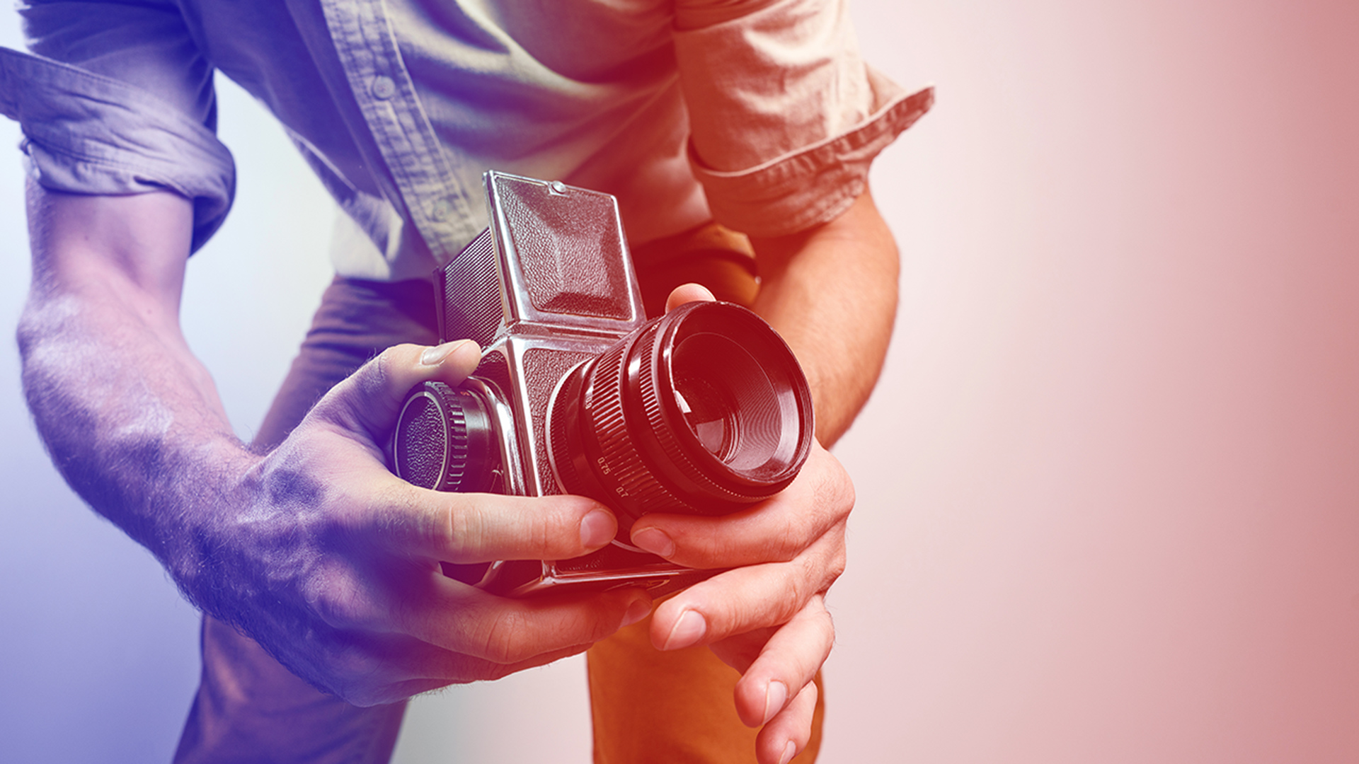 Shutterstock - Dmitry Galaganov