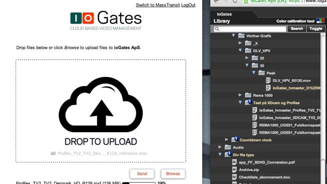 IO Gates