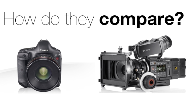Canon/Sony/RedShark
