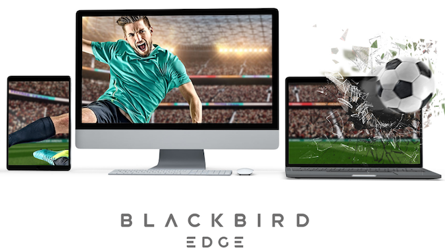 Blackbird Football.png