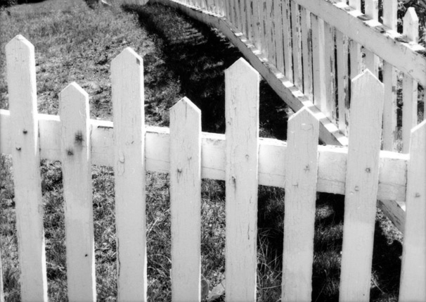Fig_2_Picket_Fence.jpg