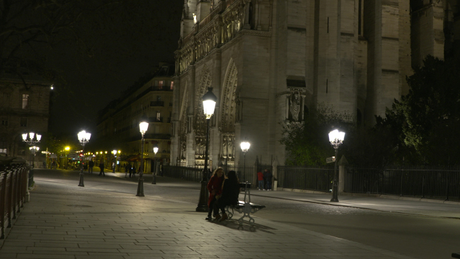 Fig_2a_Notre_Dame_NIGHT_scaled.jpg