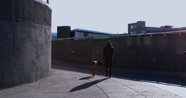 Girl_with_dog_against_bright_sun.jpg