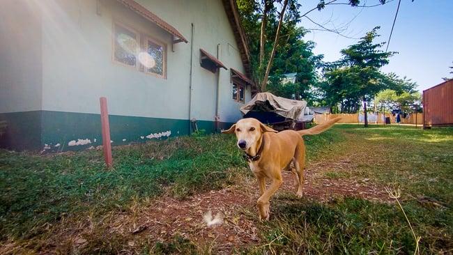 GoPro Uganda-4.jpg