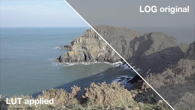 Log-vs-graded.jpg