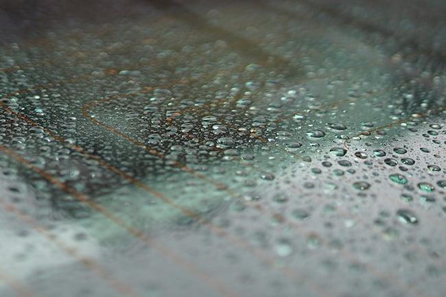 Rain drops on glass narrow dof.jpg