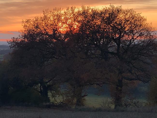 Sunset 4x zoom.jpg