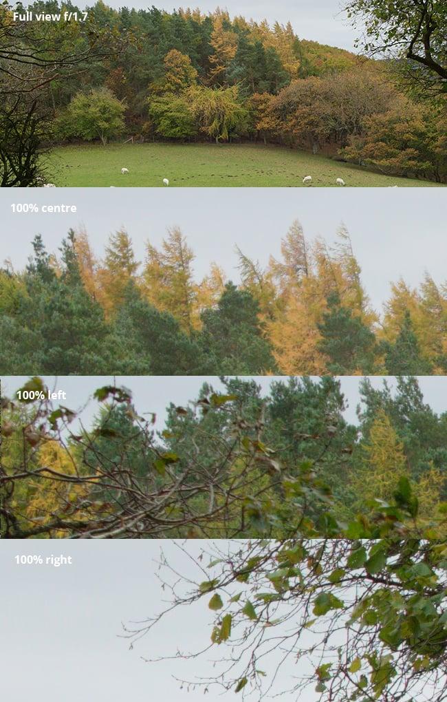 Viltrox-trees-f1.7.jpg