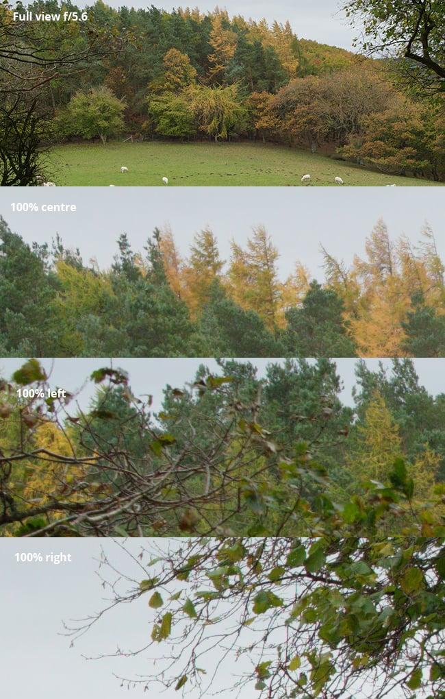 Viltrox-trees-f5.6.jpg