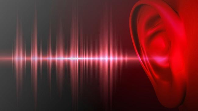 Shutterstock / RedShark Sound
