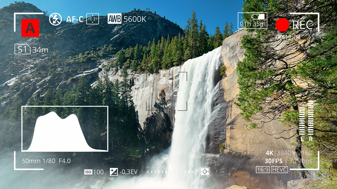 Adobe Stock composite