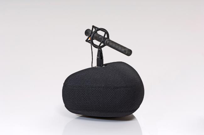 dpa dmension 5100 with ddicate 4017 shotgun microphone.jpg