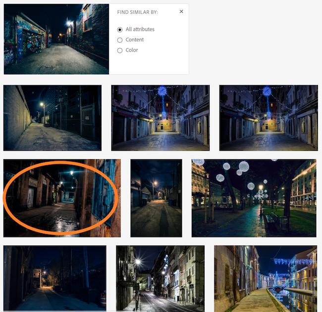 Adobe Stock Picture search 2