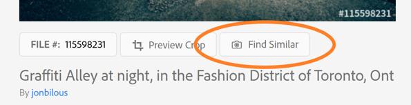 Adobe Stock Picture search