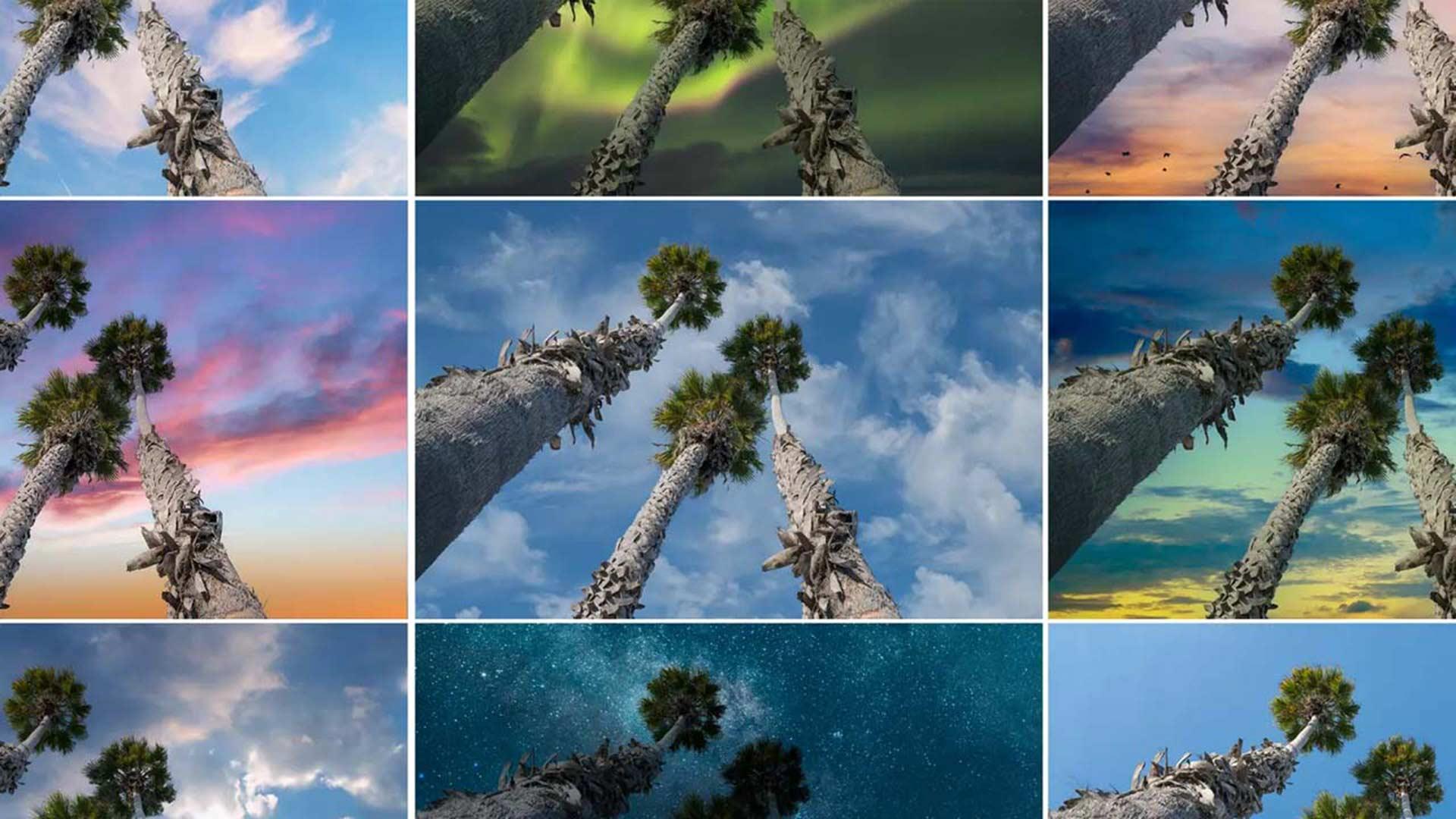 Image: Adobe.