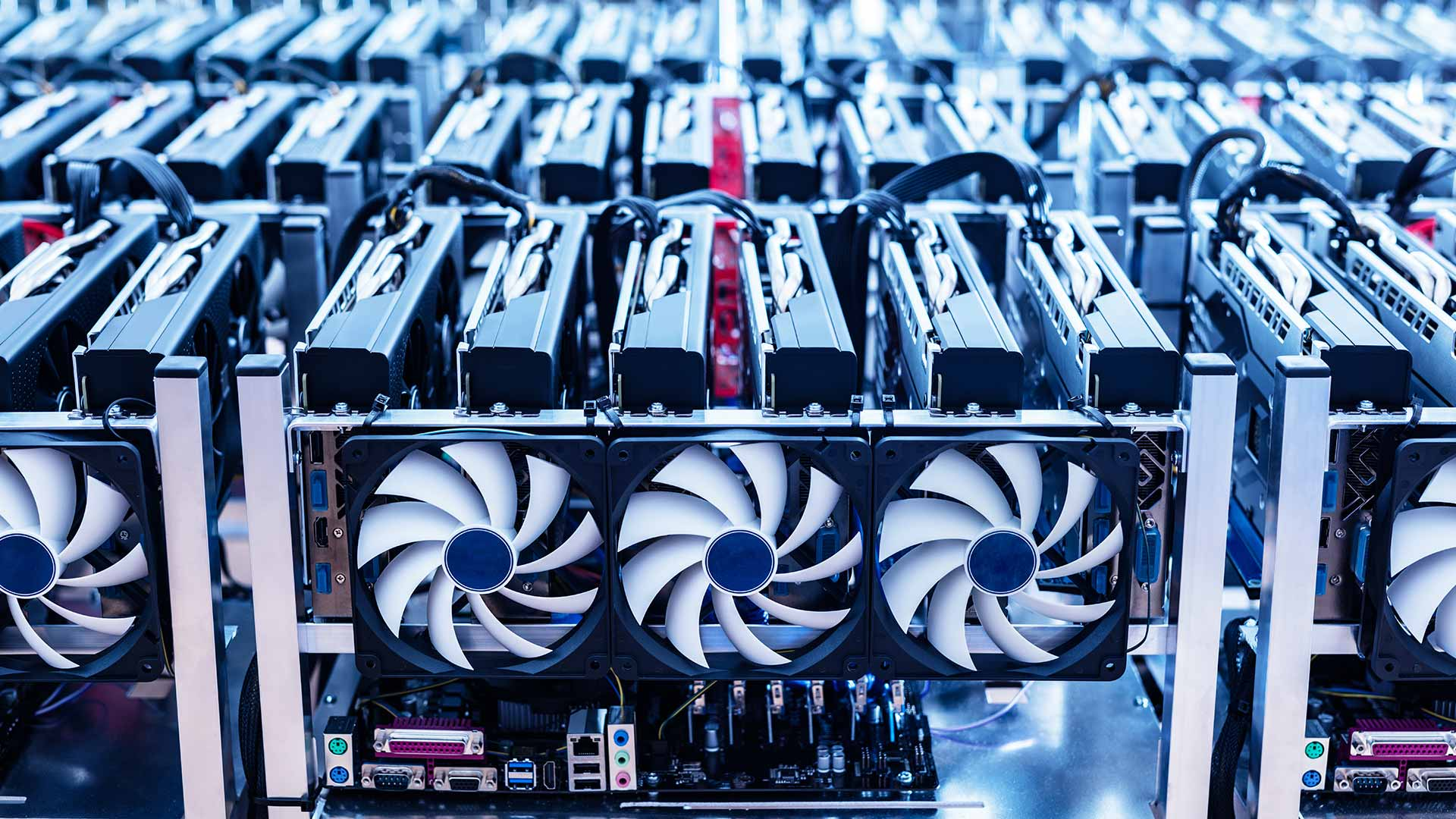 A Bitcoin mining farm, one cited reason for the current shortages. Image: