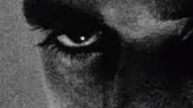 Aronofski's Pi, shot by Matthew Libatique, ASC, on black-and-white reversal.