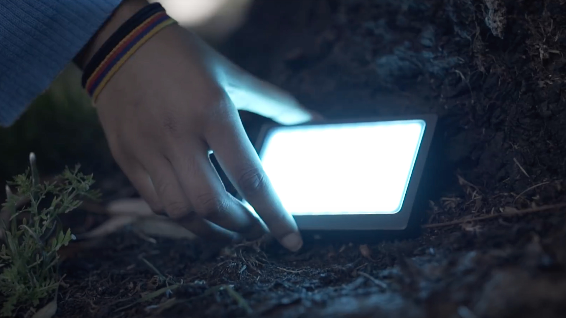 Sandmarc Prolight. Image: Sandmarc.