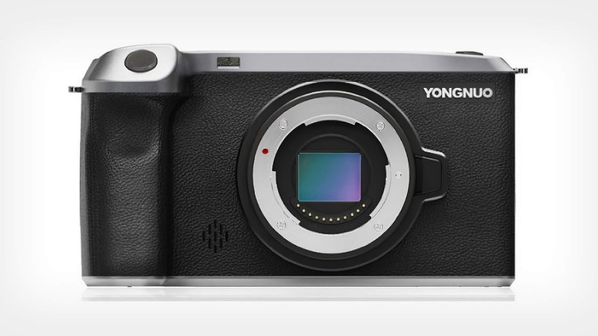 The Yongnuo YN455. Image: Yongnuo.